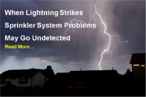 Lightning strike Sprinkler System Wire repair Sprinkler repair BlueSkyRain.com