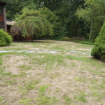 7 Top Keys Easily Stop Lawn Drought Damage