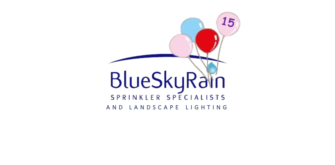 http://blueskyrain.com/wp-content/uploads/2019/01/Happy-Birthday-BlueSkyRain.com-2019.png